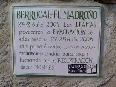 2007-01-20_berrocal_plantacion_02.jpg