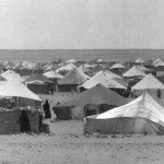 campamento-150x150.jpg