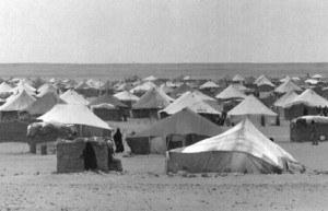 campamento-300x193.jpg