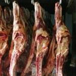 carne-150x150.jpg