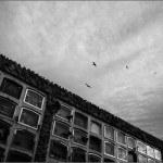 cementerio-150x150.jpg