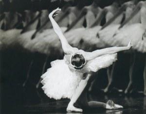 danza-300x235.jpg