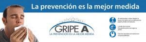 gripea-300x88.jpg