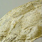 poemario-150x150.jpg
