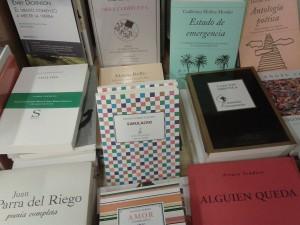 simulacro-en-la-libreria-palas-de-sevilla-300x225.jpg